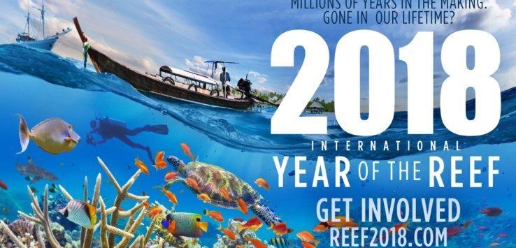 IYORImageBank Horizontal Reef