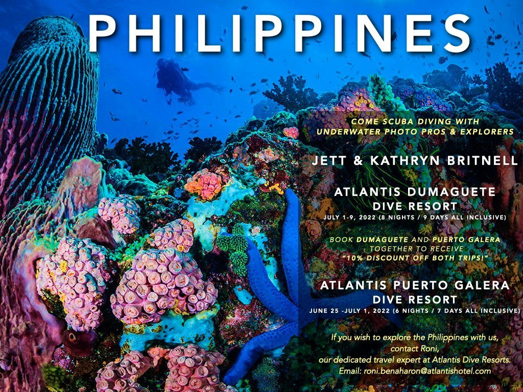 Come scuba dive with us in the Philippiness in 2022