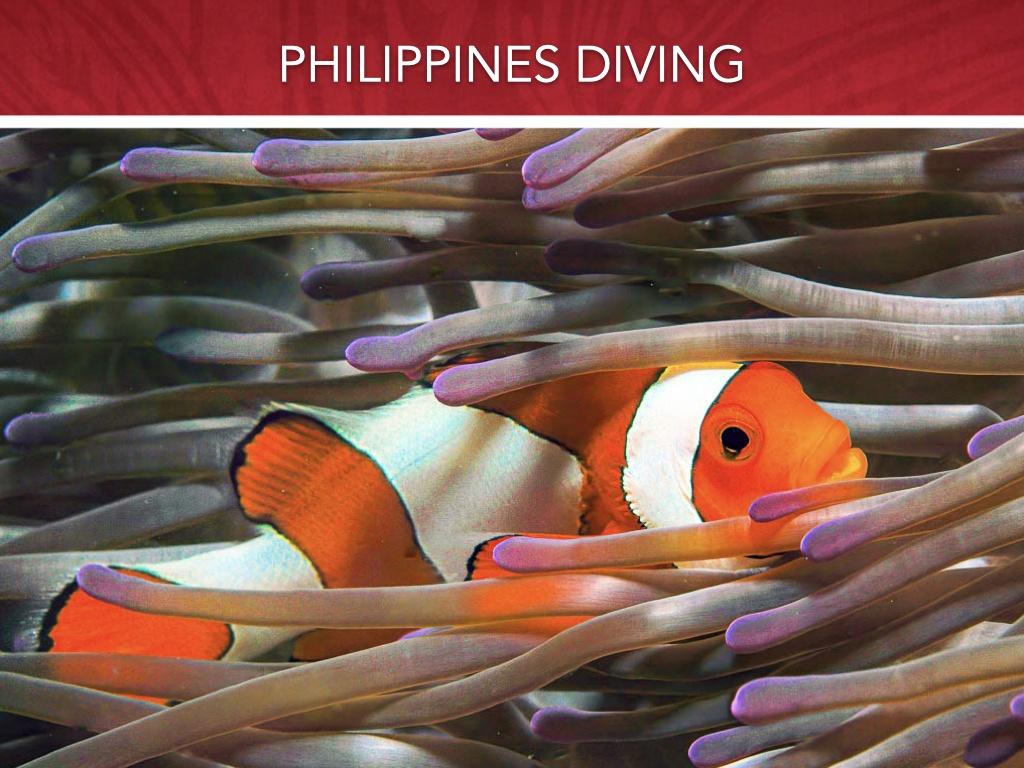 Philippines Atlantis Final May 15 2021 .007