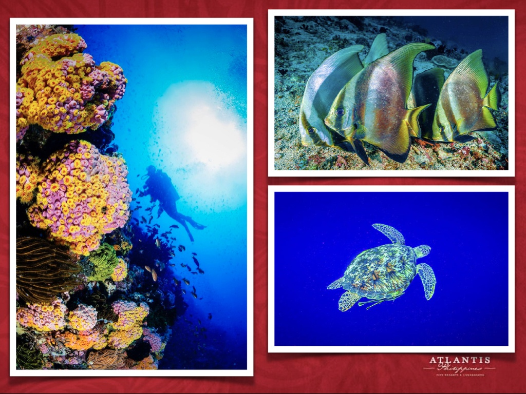 Philippines Atlantis Final May 15 2021 .008