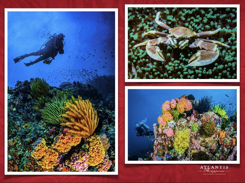 Philippines Atlantis Final May 15 2021 .009