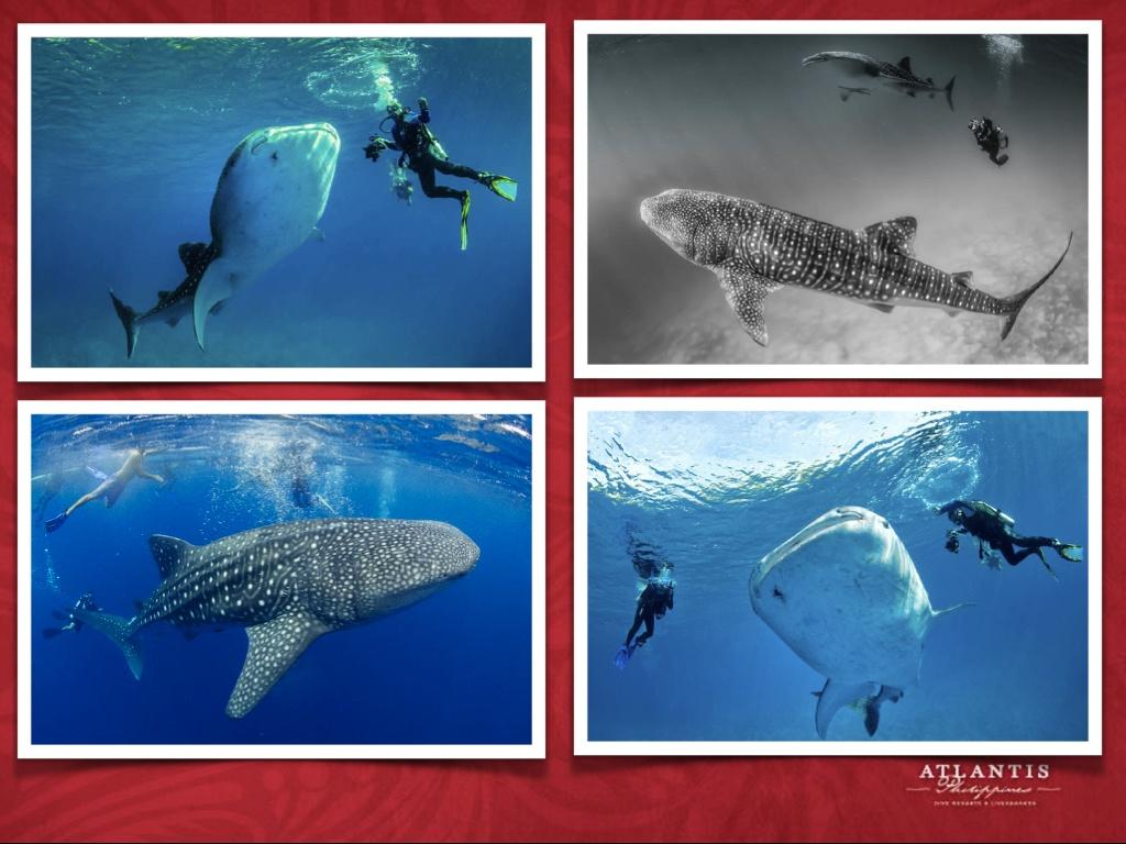 Philippines Atlantis Final May 15 2021 .014